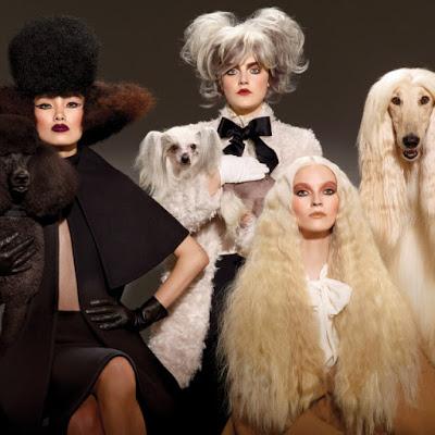 kolekcja-MAC-haute-dogs